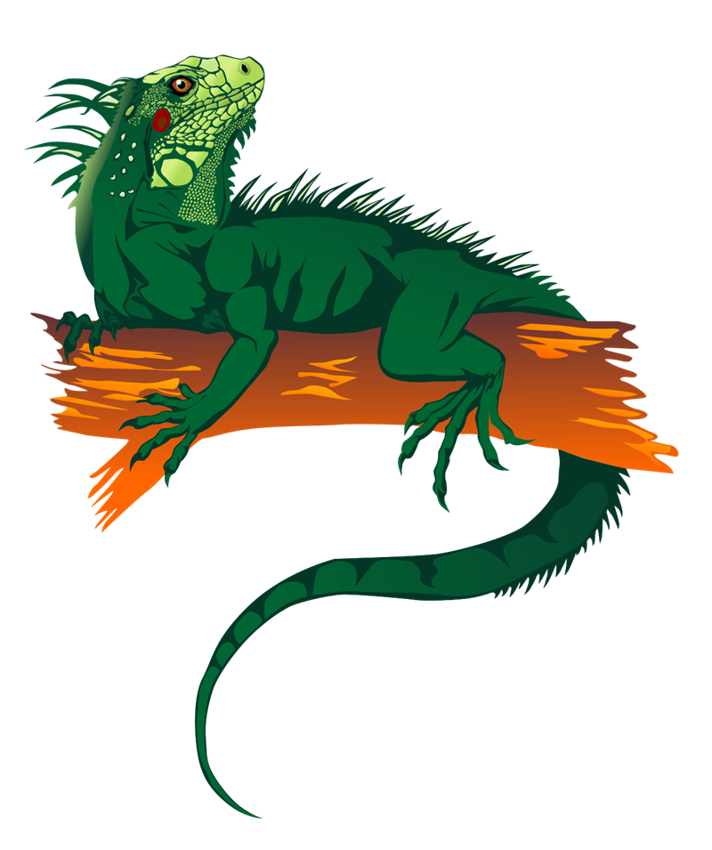 Free iguana clip art 2