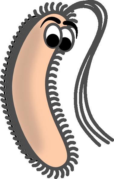 Funny bacteria clip art at vector clip art