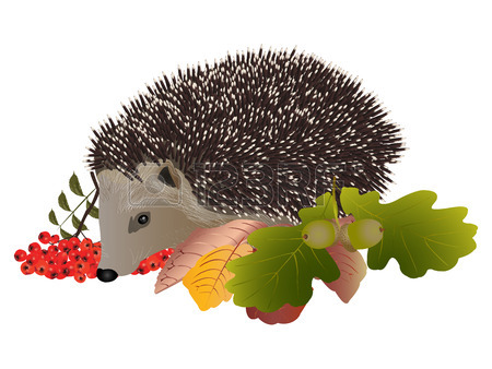 Hedgehog clipart free dfiles 2