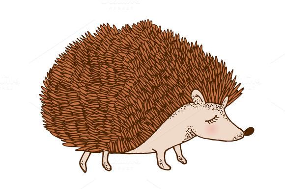Hedgehog clipart tumundografico 3