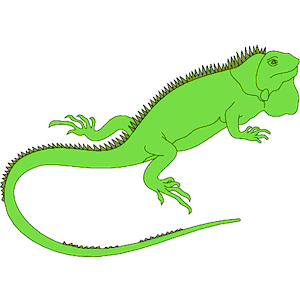 Iguana clip art clipart free download 2