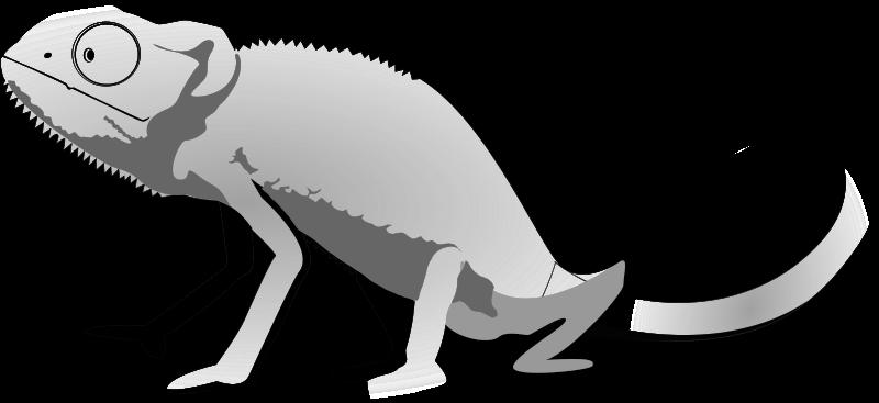 Iguana clip art clipart