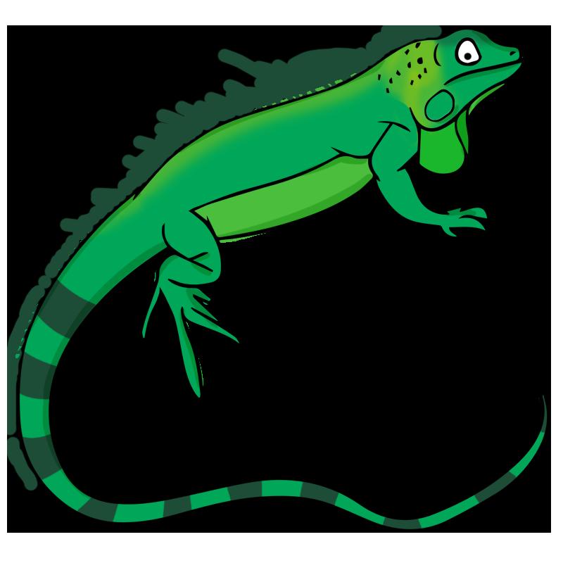 Iguana clipart 2