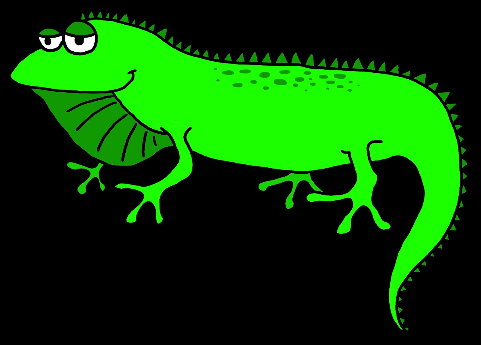 Iguana clipart free images