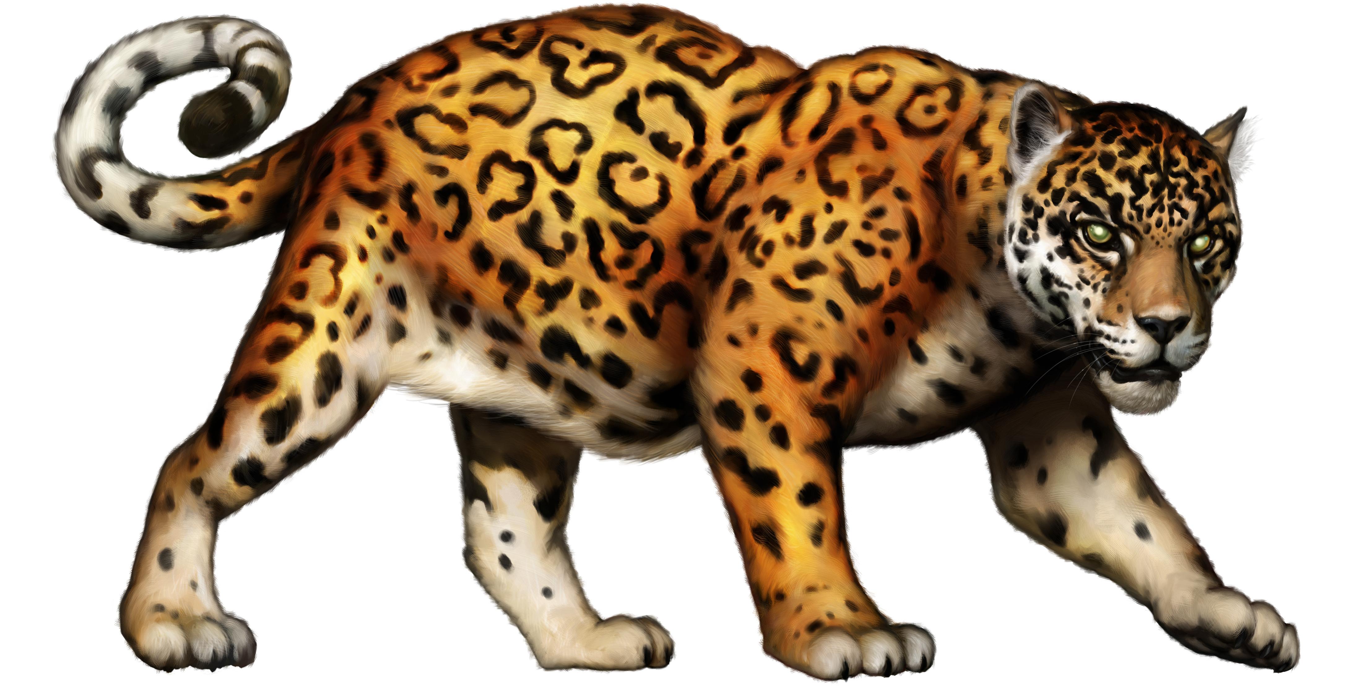 Jaguar clip art tumundografico 4