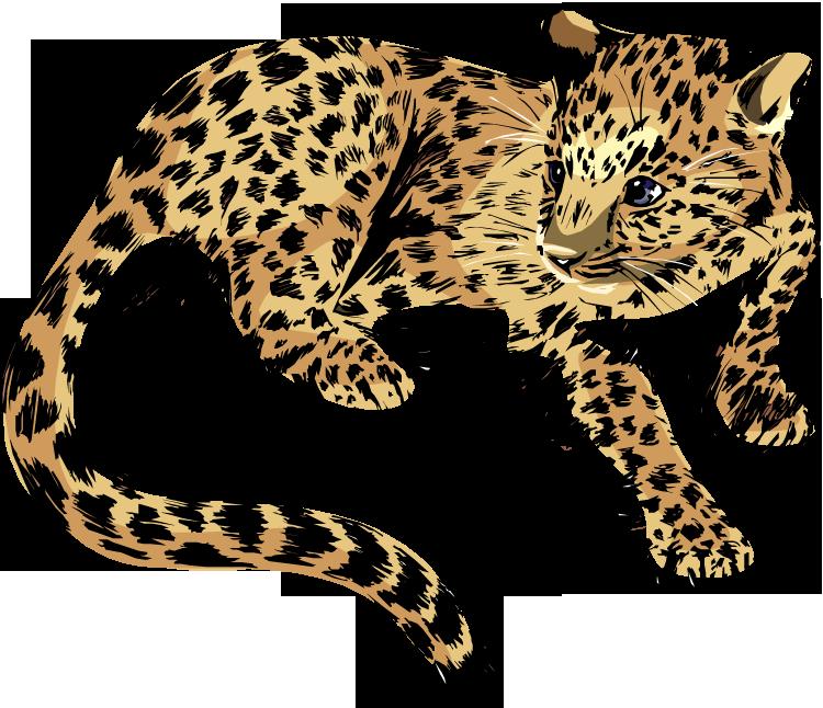 Jaguar vector clip art 2
