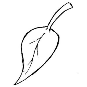 Leaf  black and white fall leaf clipart black and white free 3