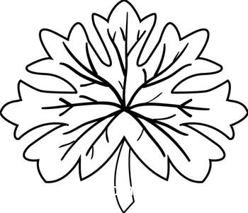 Leaf  black and white oak leaf black and white clipart