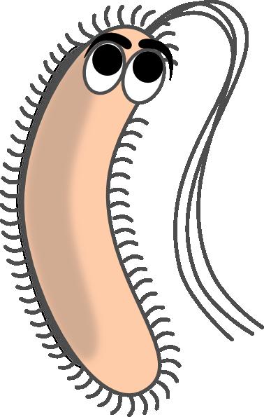 Modified funny bacteria clip art at vector clip art