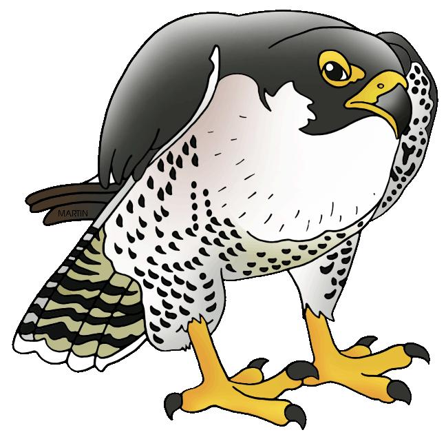 Peregrine falcon clipart clipartfest 2