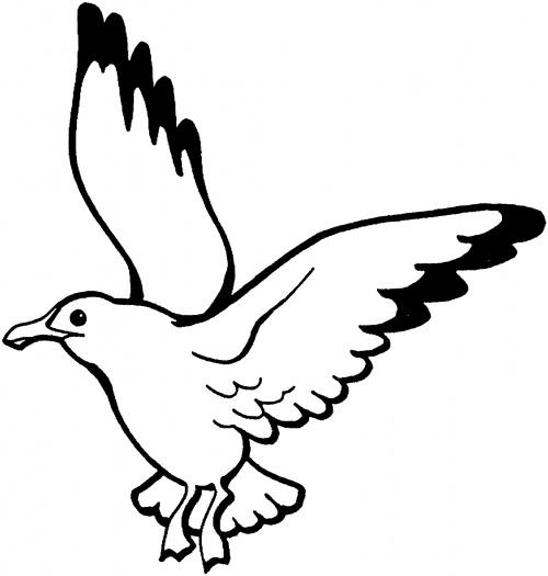 Seagull cartoons clipart famclipart