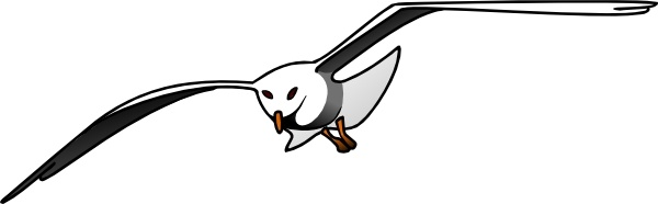 Seagull clip art free vector in open office drawing svg