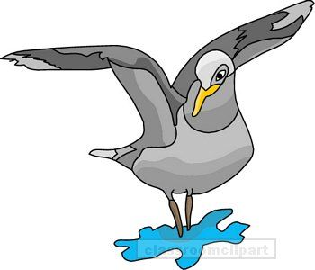Seagull clipart free clipartfest 2