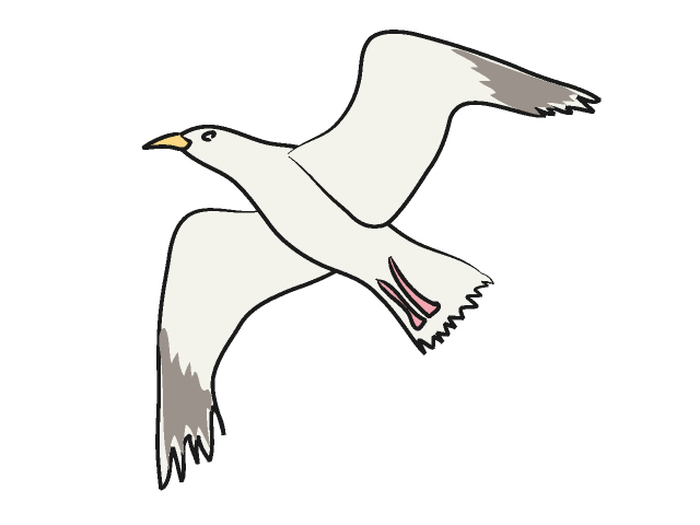 Seagull clipart free clipartfest