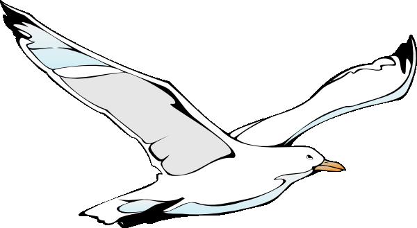 Seagull flying sea gull clip art at vector clip art
