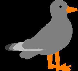 Seagull sea gull clip art clipartfest