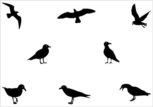 Seagull the world clip art