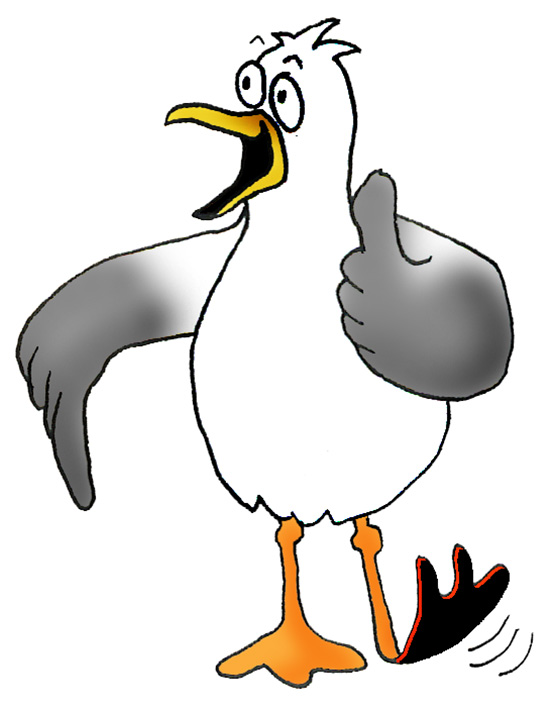 Seagull vector clipart
