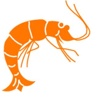 Shrimp clip art tumundografico 6