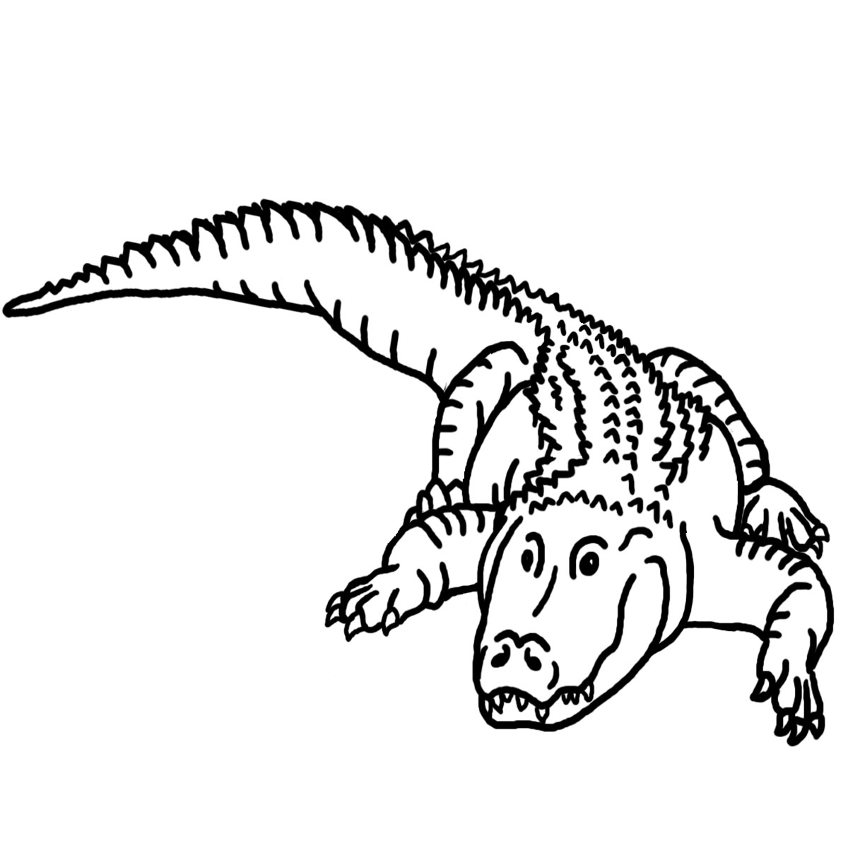 Alligator  black and white black and white clipart alligator clipartfest