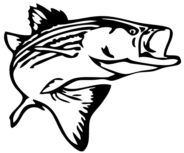 Bass fish outline clip art 2