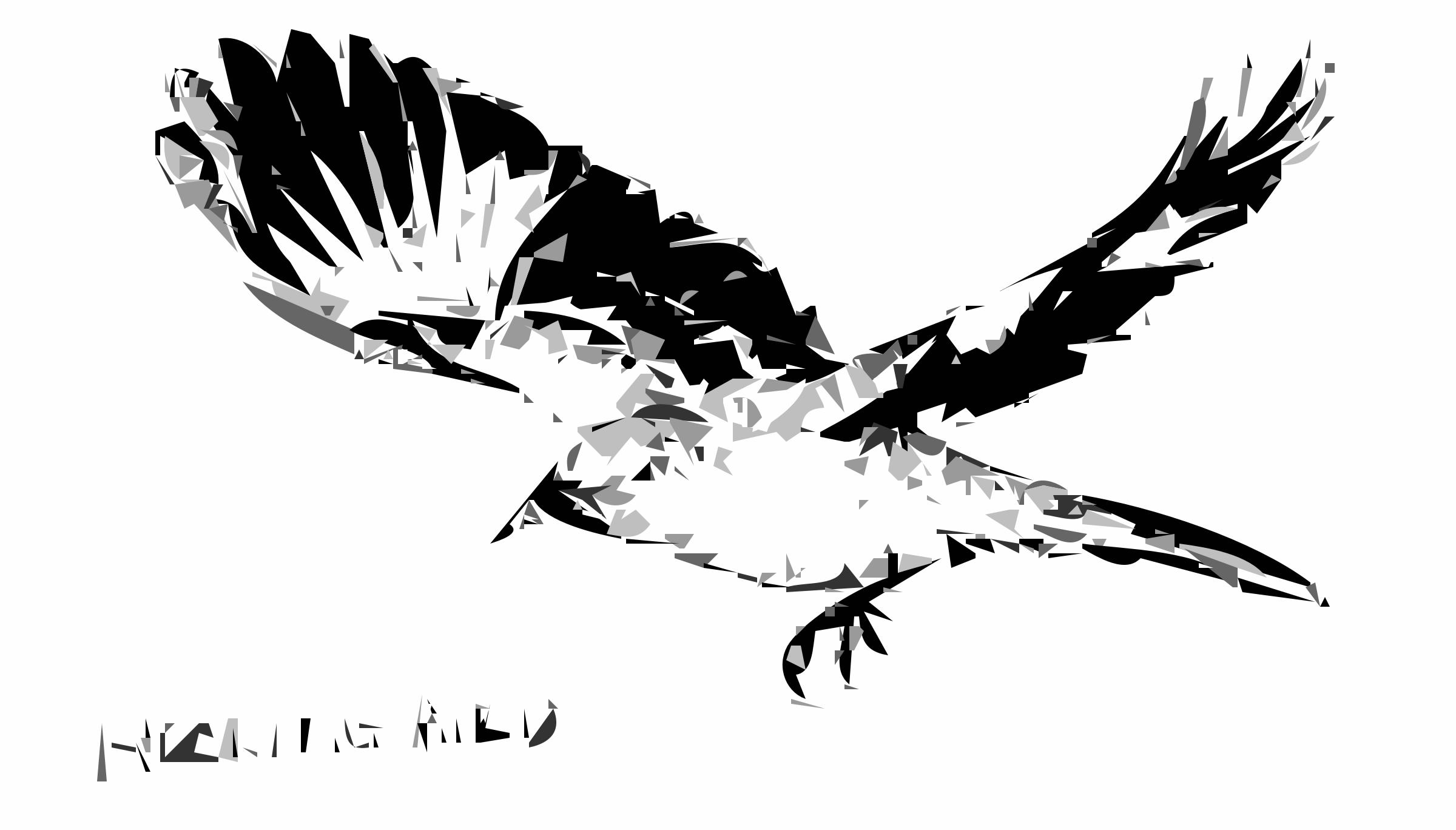 Clipart mockingbird bird