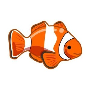 Clownfish clipart free download clip art on