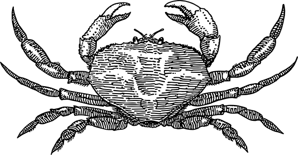 Crab  black and white crab clip art at vector clip art free