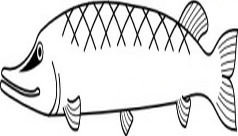 Cute fish outline free download clip art on