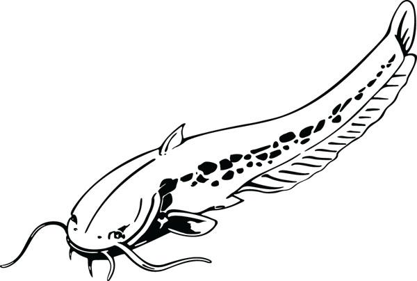 Eel aquatic animal art for personalized ts clip art