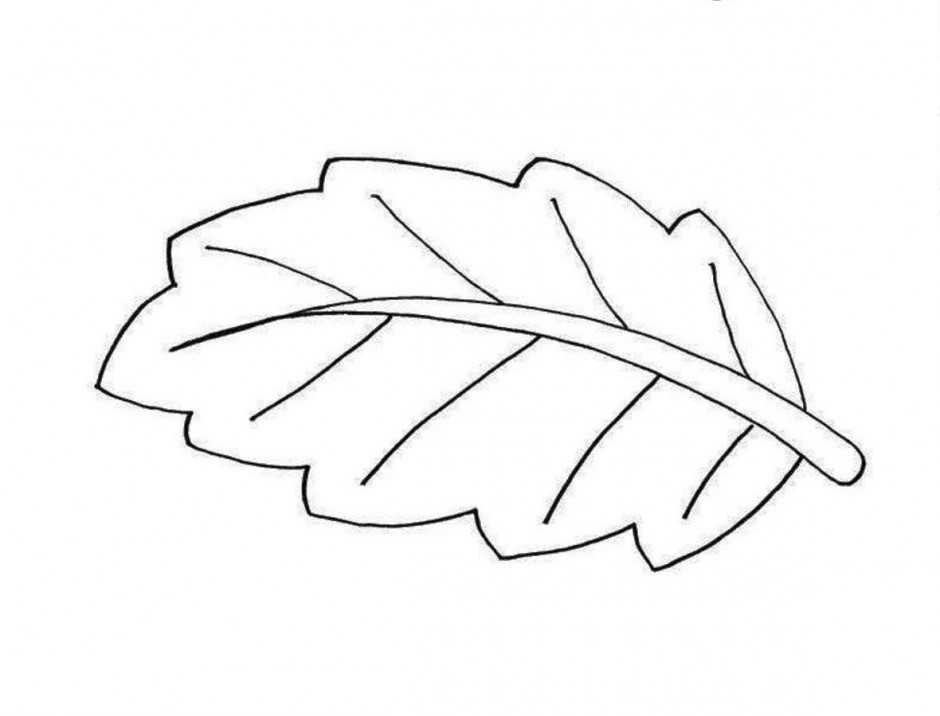 Fall  black and white leaf black and white clipart