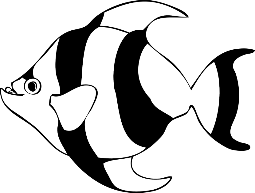 Fish black and white fish outline clipart free 4