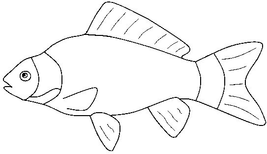 Fish outline clip art 9