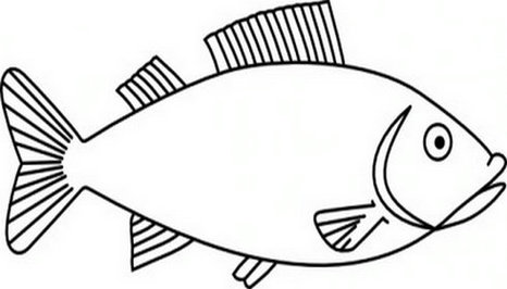 Fish outline clipart clipartfest