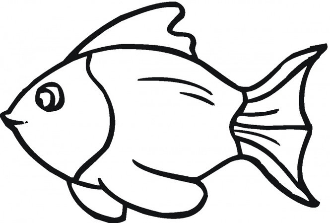 Fish outline outline of fish clipart 2