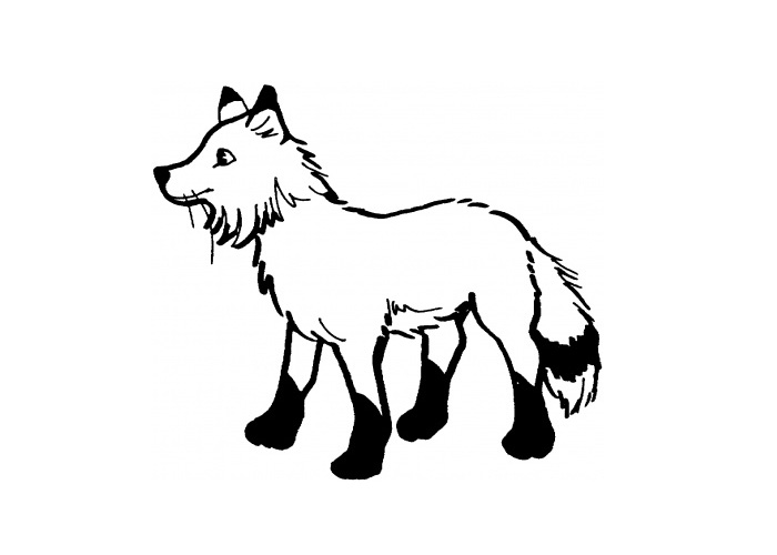 Fox  black and white fox images animal free download clip art on