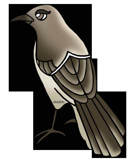 Free vector mockingbird clip art clipart
