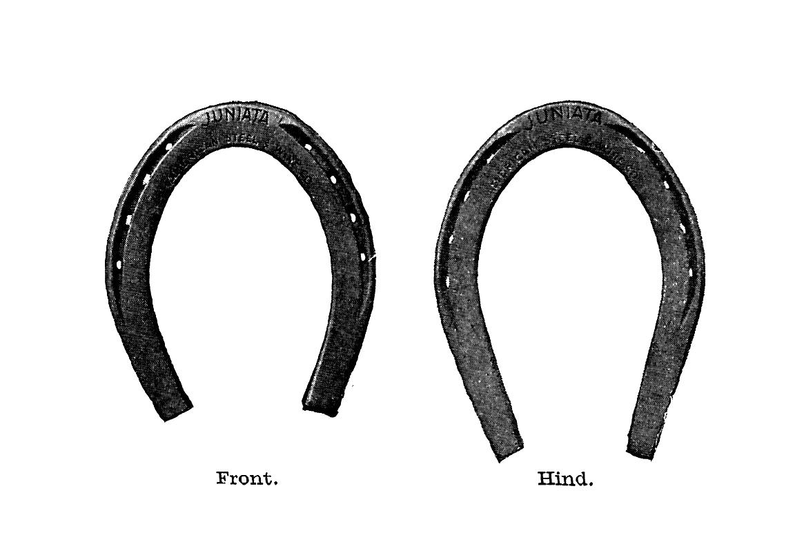 Horse shoe gold horseshoe clipart
