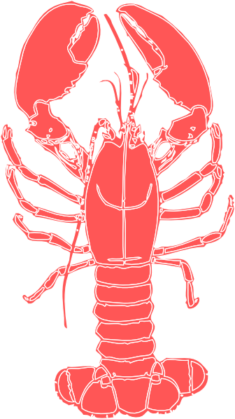 Lobster outline coral lobster clip art at vector clip art