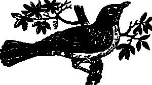 Mockingbird clip art download 2
