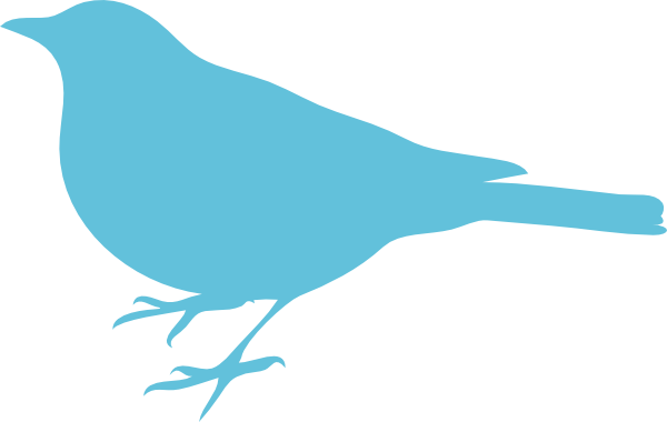 Mockingbird clipart 4