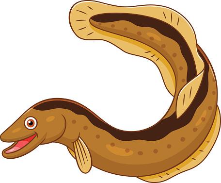 Moray eel clipart clipart