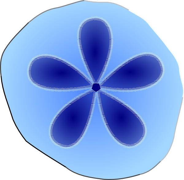 Sand dollar clip art pattern download vector clip
