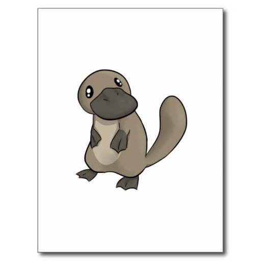 Cartoon platypus free download clip art on 3