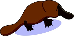 Platypus clip art 5 free clipart images