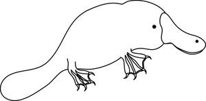 Platypus clipart 5
