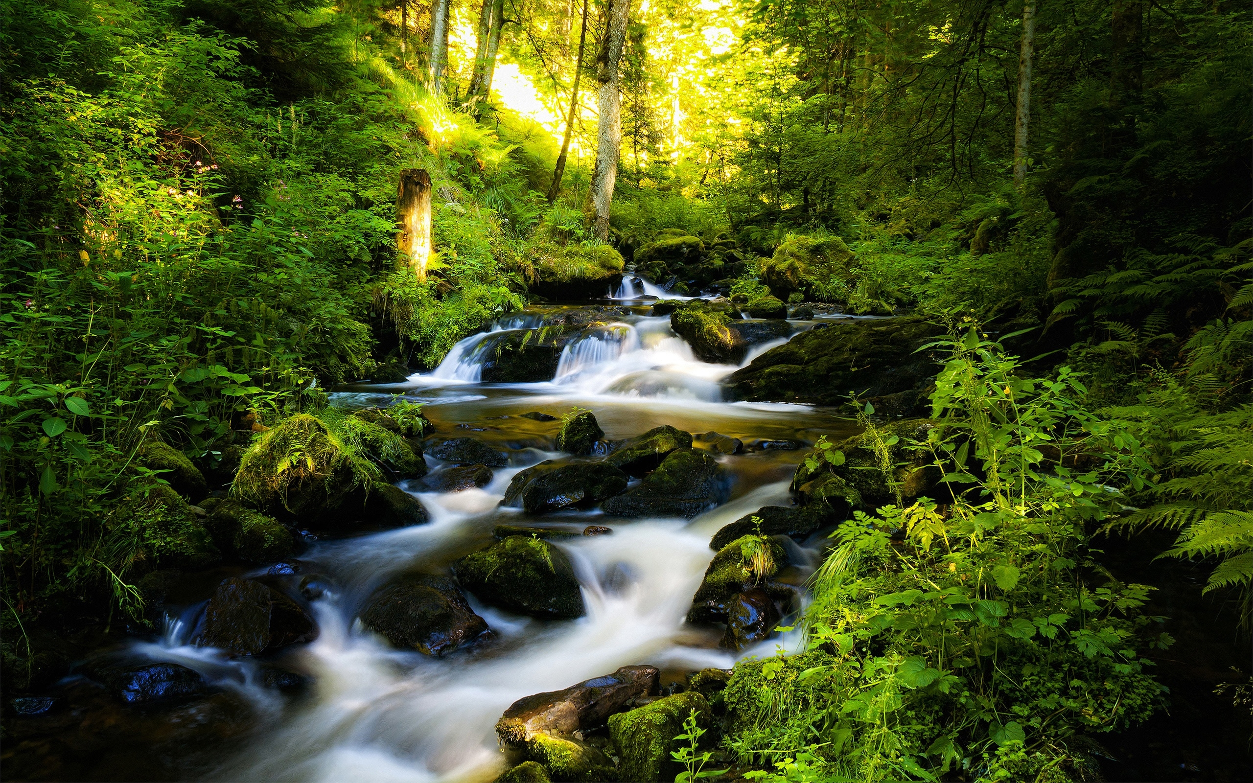 Mountain stream clipart wallpaper 2