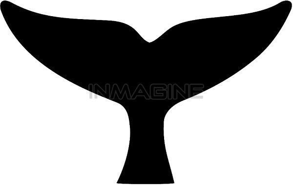 Orca cliparts 4