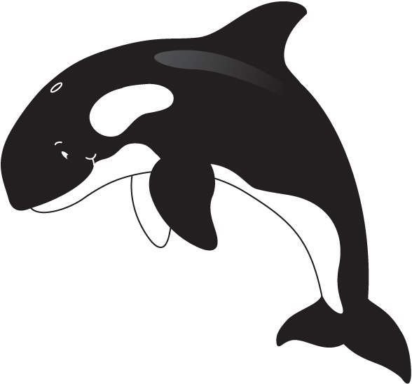 Orca whale clipart 4