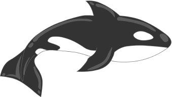 Orcas clip art free clipart images 4